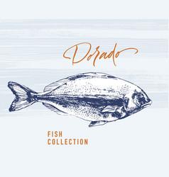 Dorado fish brush for logo vector