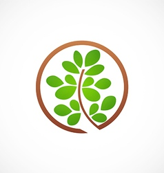 Plant leaf ecology abstract logo vector