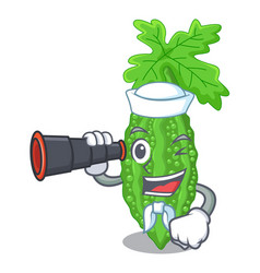 Sailor with binocular bitter melon character on vector