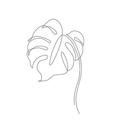 Abstract one line art leaf monstera contour vector