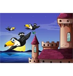 Birds near the castle vector image