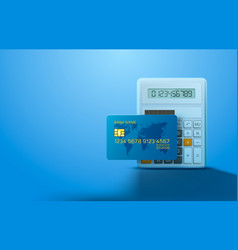 electronic credit card and calculator icon vector image