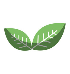 Green leaves environment care icon vector