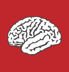Human brain icon - intelligence and iq concept vector