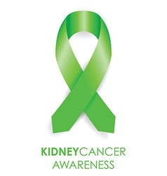 Kidney cancer awareness ribbon vector