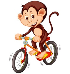 Little monkey riding a bicycle vector