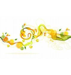 Orange and lime juice splash vector image