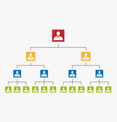 Organization chart tree corporate hierarchy vector