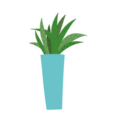 plant in pot decoration interior leaves isolated vector image