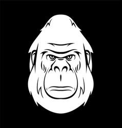 White Gorilla Head vector image vector image
