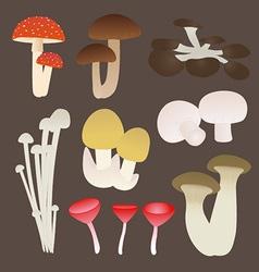Mushroom Set vector image vector image