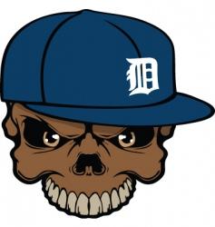 tigers skull vector image vector image