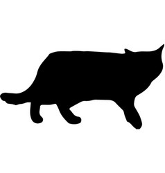 black silhouette of walking cat isolated on white vector image
