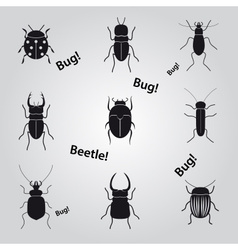 Bugs and beetles icons set eps10 vector