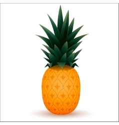 Cartoon ananas vector image