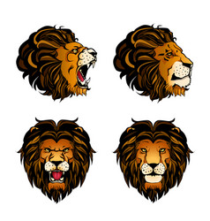 Collection of four colored lion heads vector