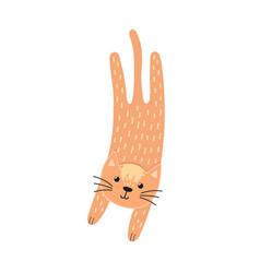 cute jumping cat in cartoon style feline vector image