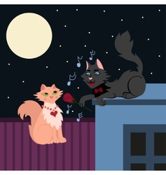Night serenade two loving cats cat in love sings vector image