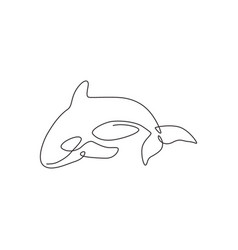 One continuous line drawing cute orca vector