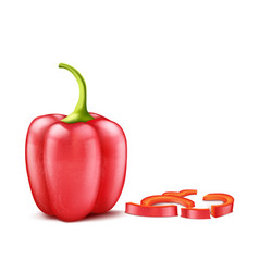 realistic red bell pepper vector image
