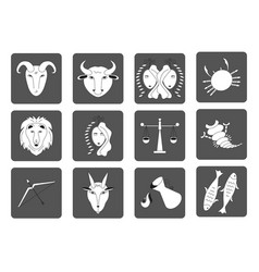 set of black and white zodiac signs on a dark vector image