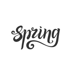 spring lettering hand write decorative element vector image