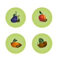 Plum Peach Apricot Kiwi Fruits Icons Set vector image