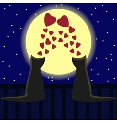 Two cats in love two loving cats Valentine day vector image
