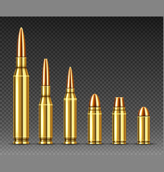 Bullets different calibers stand in row ammo vector