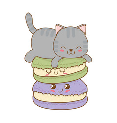 Cute little cat with cookies kawaii character vector