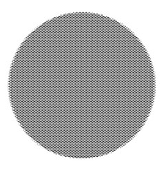 Fish filled circle composition vector