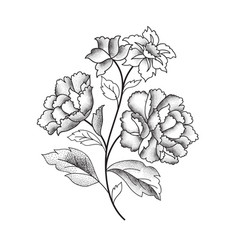 flower bouquet floral sketch engraving background vector image