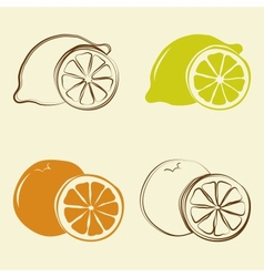 Lemon and orange icons vector