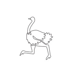 one single line drawing giant running ostrich vector image