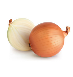 Onions isolated realistic 3d vector