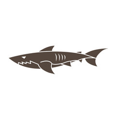 shark swim cartoon graphic vector image