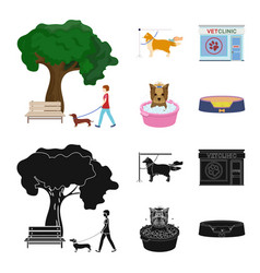 Walking with a dog in the park combing a dog a vector