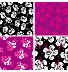 floral background hibiscus vector image vector image