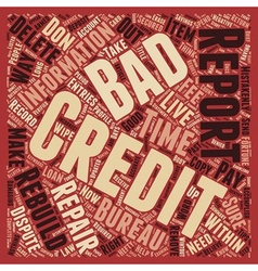 How To Wipe Out Bad Credit And Rebuild Your Credit vector image