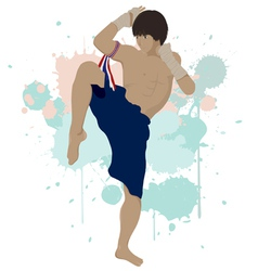 Thai boxing Muay Thai vector image