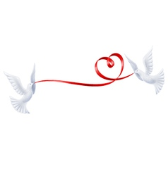 Pigeons with a ribbon in the form of heart vector image vector image