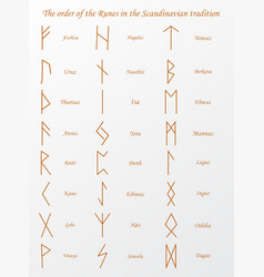 brown runes symbols on a vector image