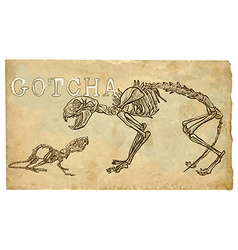 cat and mouse skeletons - freehand vector image