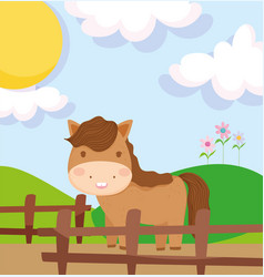 horse behind wooden fence field farm animals vector image