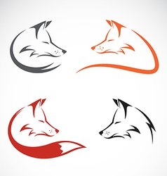 image of an fox design vector image