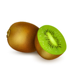 kiwi isolated on white background vector image