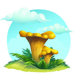 Mushroom chanterelle on the grass under the sky vector
