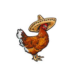 Sketch hand drawn chicken in sombrero vector