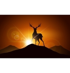 Deer on a Mountain vector image vector image