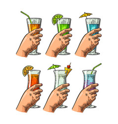 female hand holding a glasses of cocktails vector image vector image